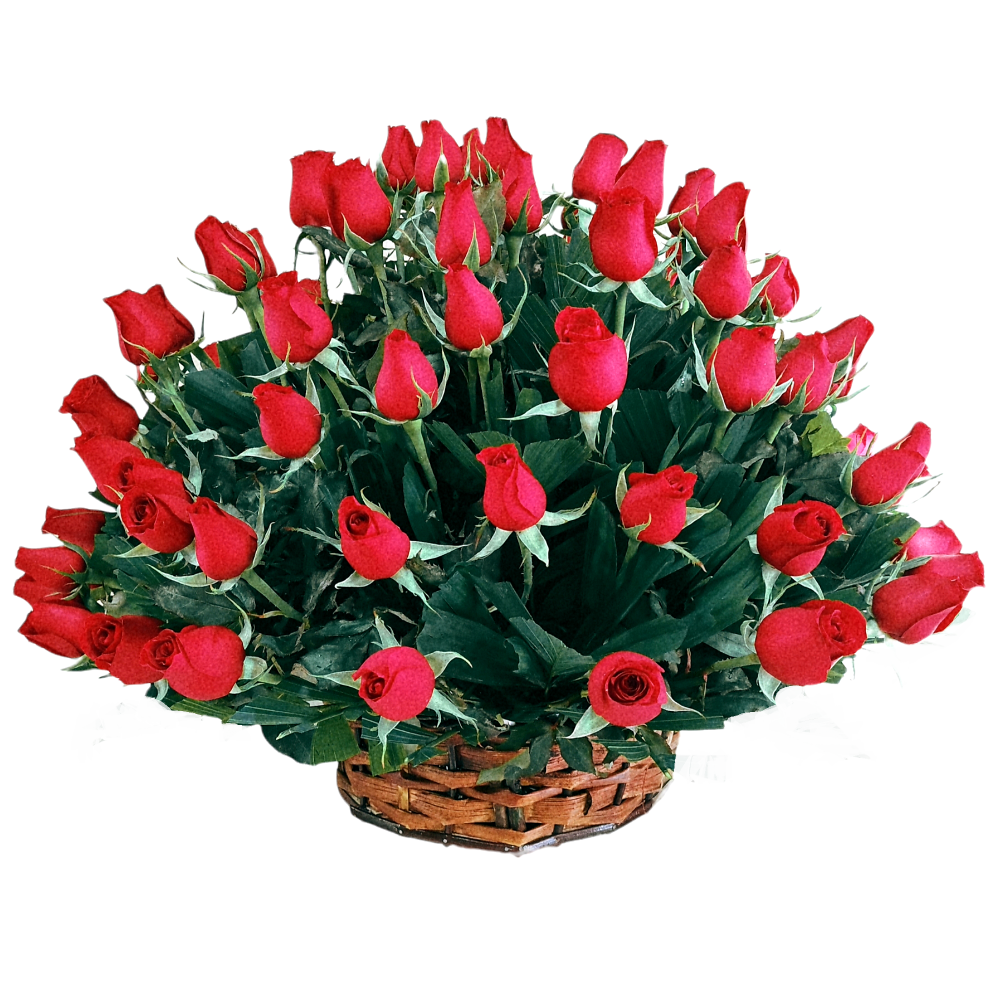 Canasta de rosas rojas 100 piezas