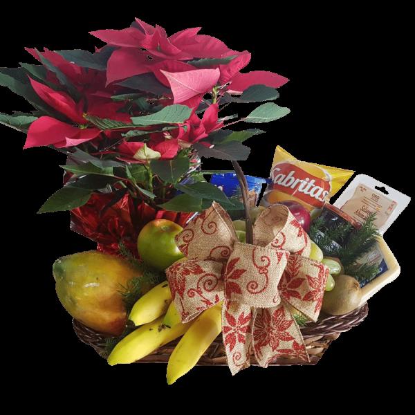 Arcón navideño nochebuena y frutas