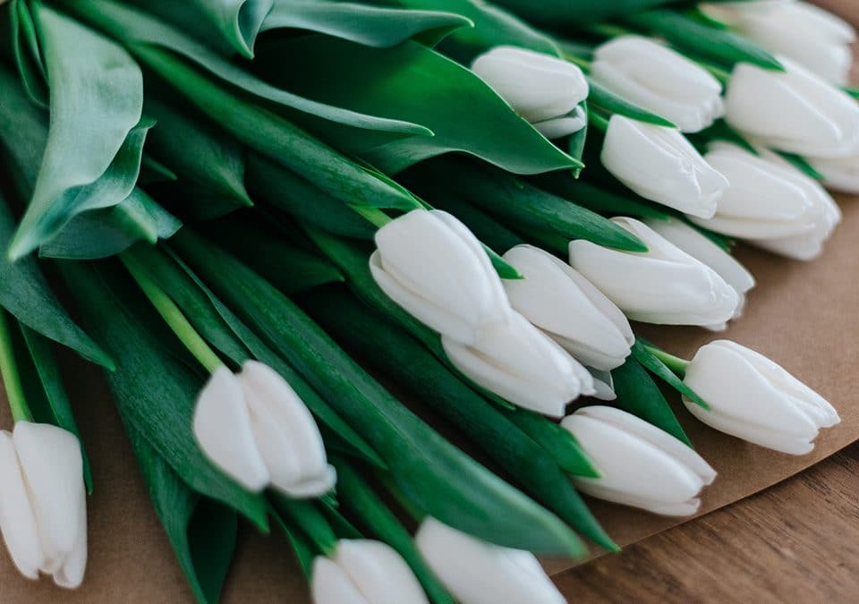 Cuidados para alargar la vida de tus arreglos de flores naturales